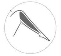 leg_lower_icon